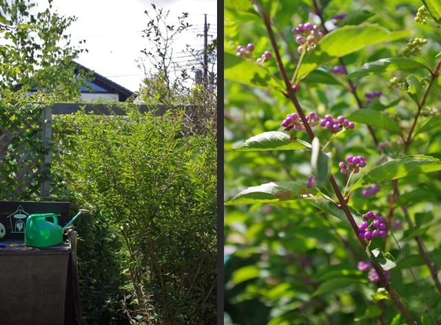 2012-09-05 2012-09-05 001 051-horz