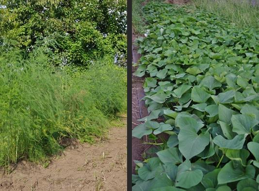 2012-09-08 2012-09-08 001 050-horz