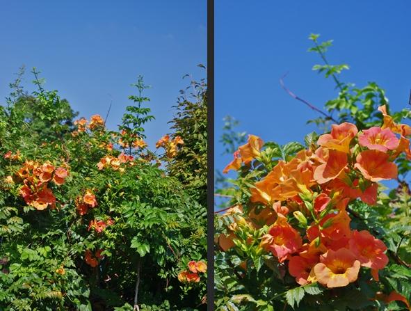 2012-09-12 2012-09-12 005 011-horz