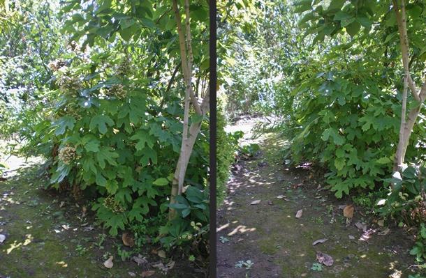 2012-09-12 2012-09-12 003 011-horz