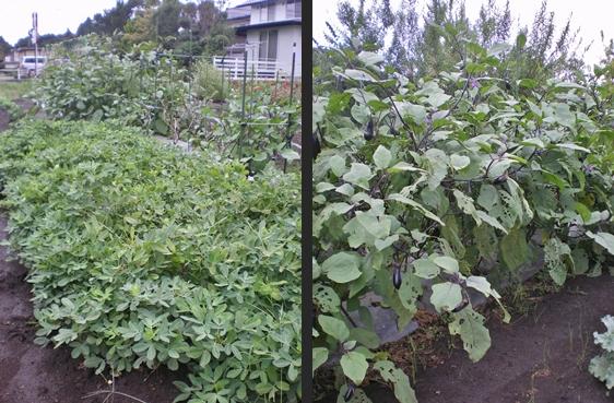 2012-09-25 2012-09-25 001 019-horz