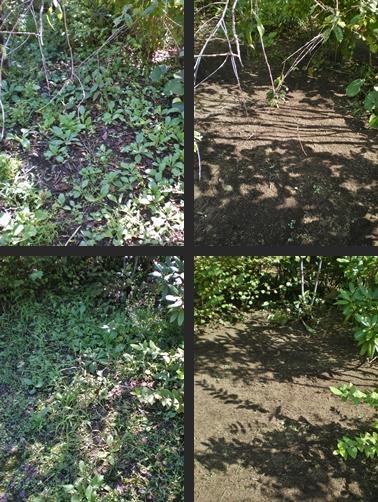 2012-09-26 2012-09-26 003 021-tile