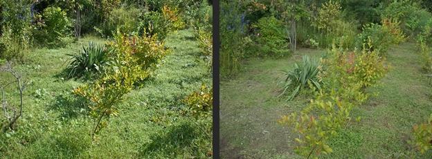 2012-09-26 2012-09-26 003 003-horz