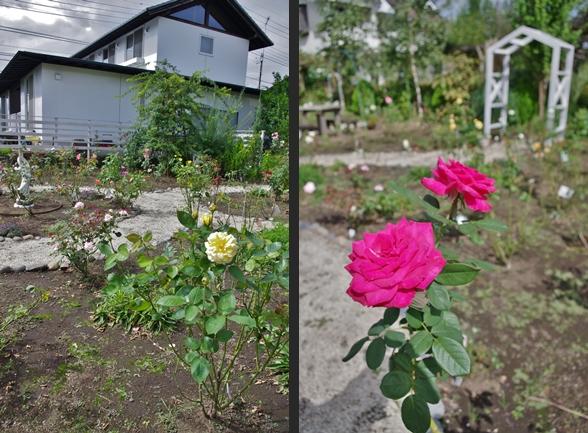 2012-09-28 2012-09-28 007 025-horz