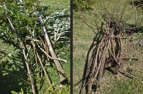 2012-10-04 2012-10-04 001 033-horz