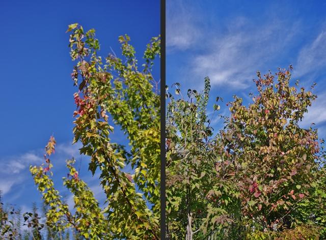 2012-10-16 2012-10-16 001 020-tile
