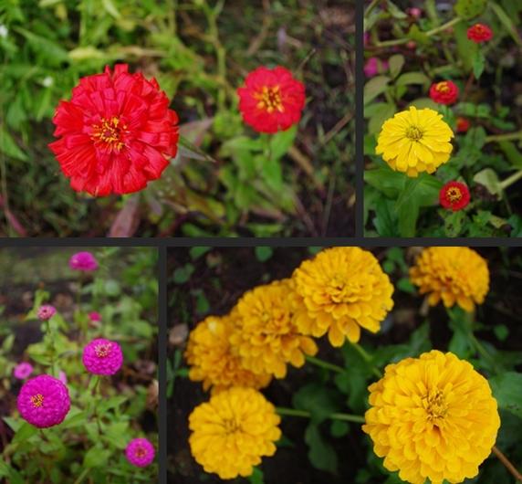 2012-10-23 2012-10-23 001 069-horz-vert