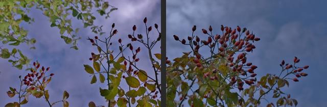 2012-10-27 2012-10-27 002 062-horz