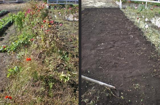 2012-10-29 2012-10-29 001 003-horz