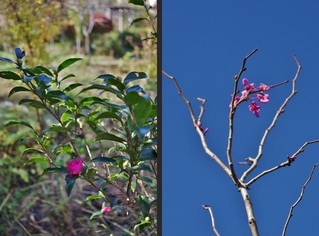 2012-11-03 2012-11-03 001 084-horz