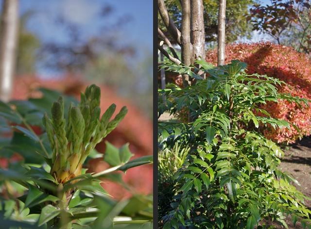 2012-11-03 2012-11-03 001 073-horz