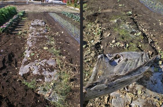 2012-11-14 2012-11-14 003 013-horz