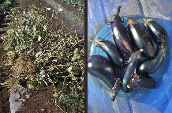 2012-11-14 2012-11-14 003 011-horz