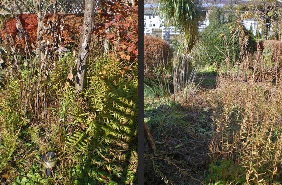 2012-11-21 2012-11-21 005 017-horz