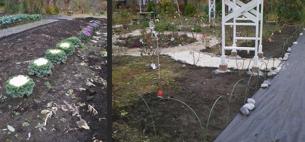 2012-11-22 2012-11-22 003 004-horz