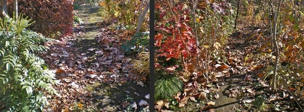 2012-11-21 2012-11-21 005 030-horz