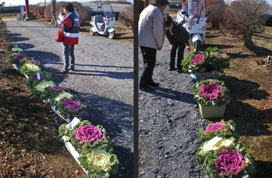 2012-11-25 2012-11-25 004 005-horz