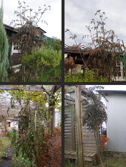 2012-11-28 2012-11-28 001 025-tile