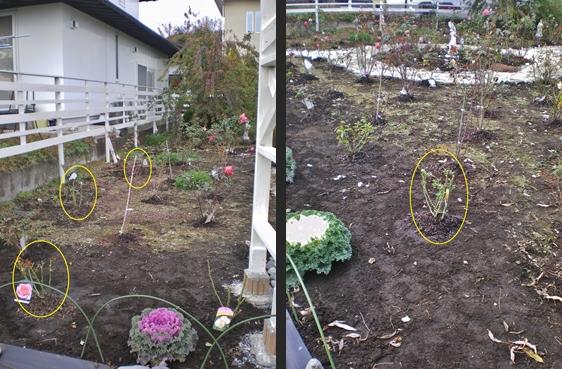 2012-11-29 2012-11-29 001 006-horz