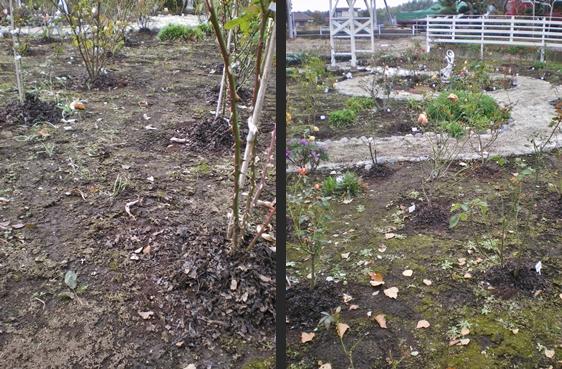 2012-11-29 2012-11-29 001 003-horz