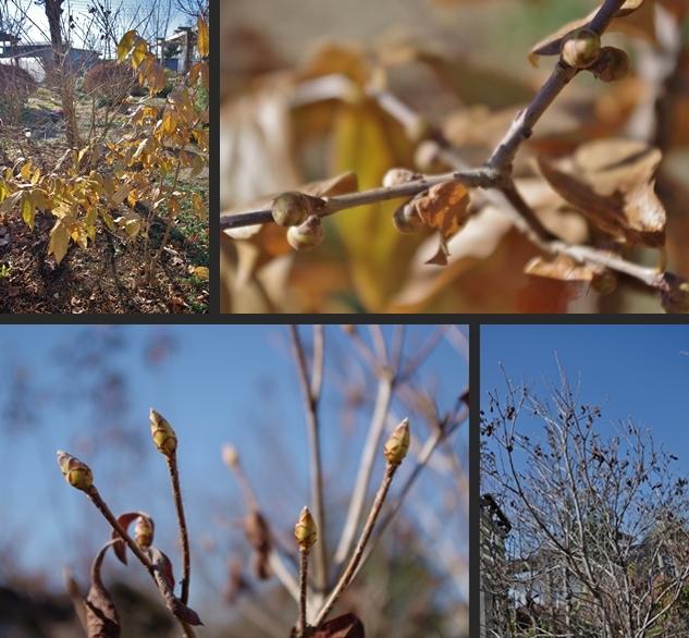 2012-12-25 2012-12-25 001 051-horz-vert