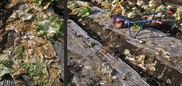 2012-12-26 2012-12-26 001 019-horz