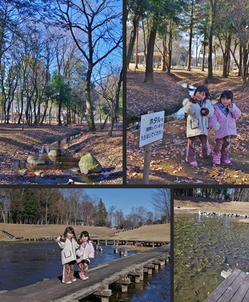 2012-12-27 2012-12-27 001 071-horz-vert