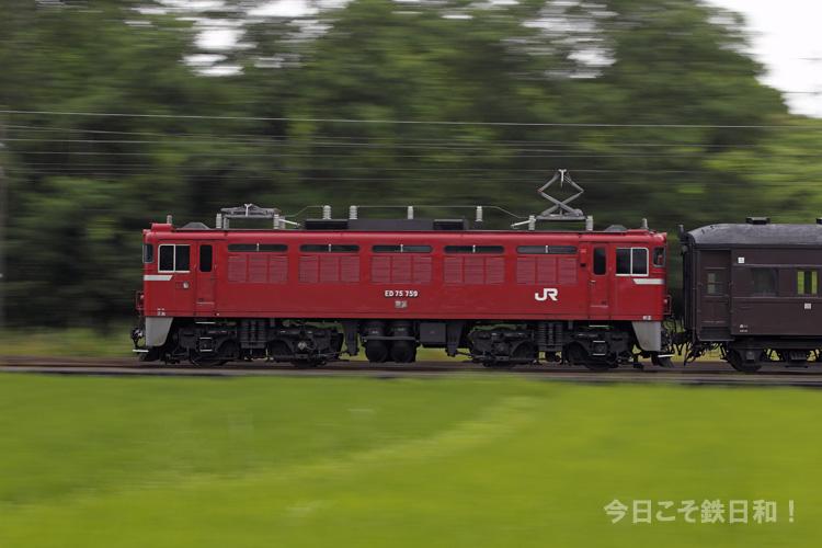 _MG10776.jpg