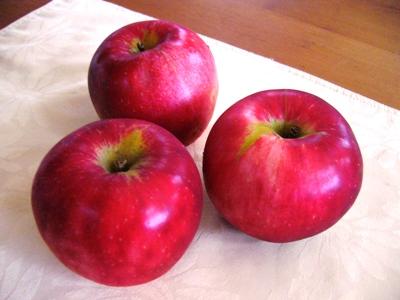 りんご・茜