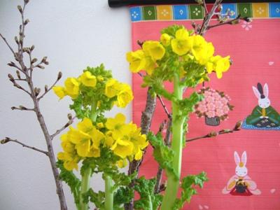 玄関に春2