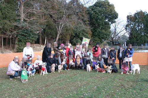 犬祭り28