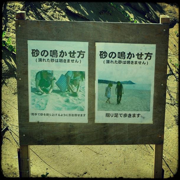 16_20120828131816.jpg