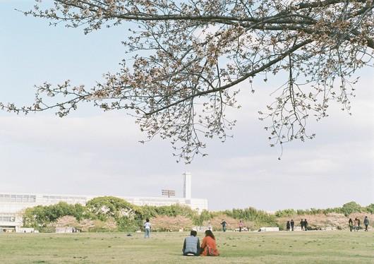 2012.4.7 篠山 1329 (31)