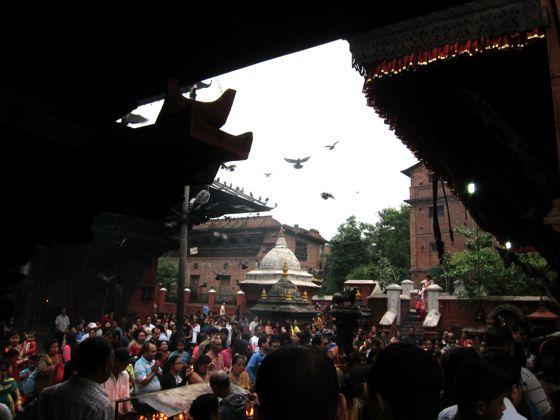 nepal06.jpg