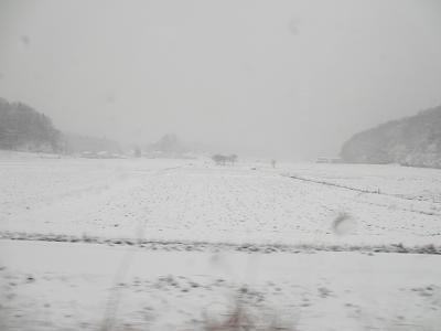 真っ白な景色