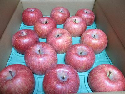 りんごがたくさん!!