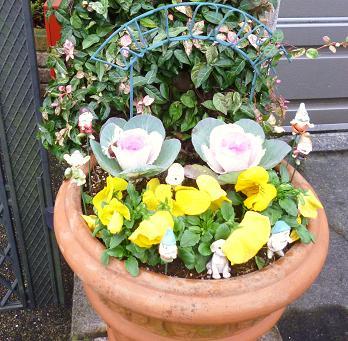 庭の花々 001