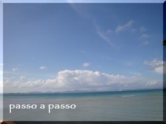 DSC07557.jpg