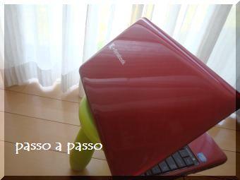 DSC07733.jpg