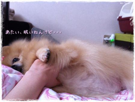 あたい、眠いねんけど・・・