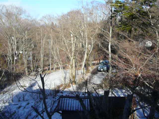 我が家の裏庭と2度目の積雪