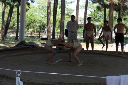 8月3日相撲1