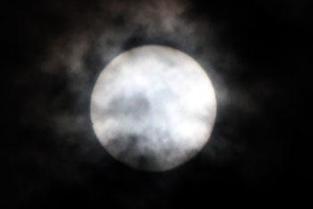 金星日面通過 019