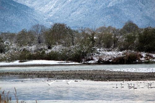 20121202雪景色 074