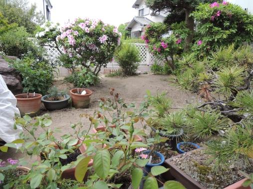 5月2日 くるみんs Garden