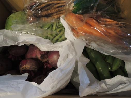 6月12日 野菜
