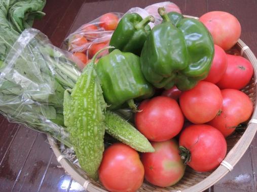 7月18日 野菜1