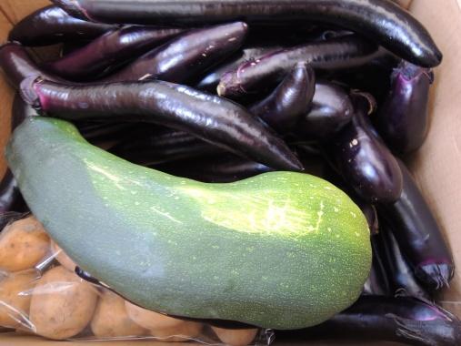 7月18日 野菜3