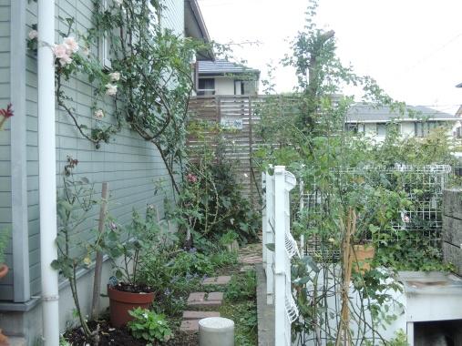 9月20日 東の庭