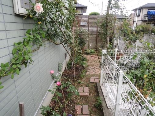 9月30日 東側の庭